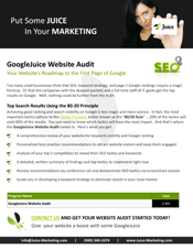 Web Audit Brochure