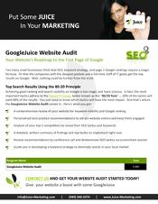 Web Audit Brochure