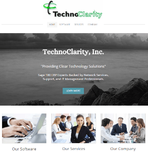 TechnoClarity Website (New)