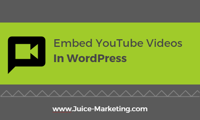 Embed YouTube Video in WordPress